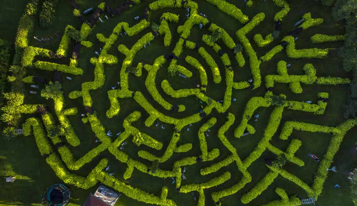 Green maze representing technology for mental health
